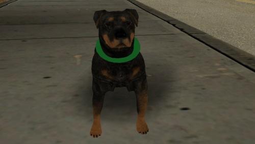 Собака Чоп из GTA 5 для GTA SA